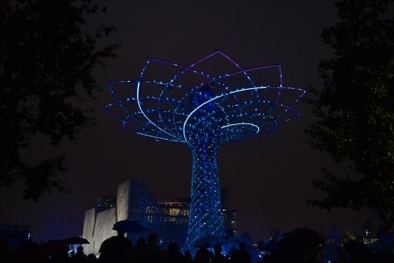 L'arbre de la vie, la nuit.