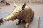 Le cochon de Bulguksa
